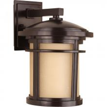 Progress P6085-20 - P6085-20 1-100W MED WALL LANTERN